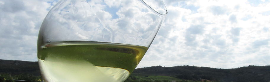 Soave wine: I discover some amazing white wines in this beautiful place