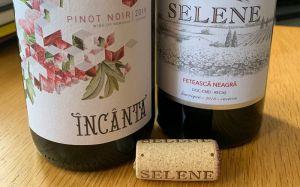 Cremele Recas wines from Romania