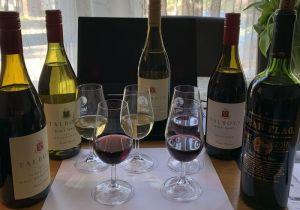 Gallo Fine Wine California wine