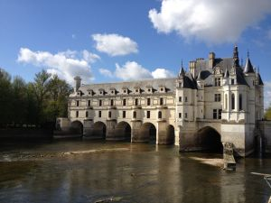Wines from Loire Valley