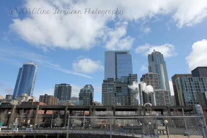 Seattle Skyline from the Seattle Great Wheel
