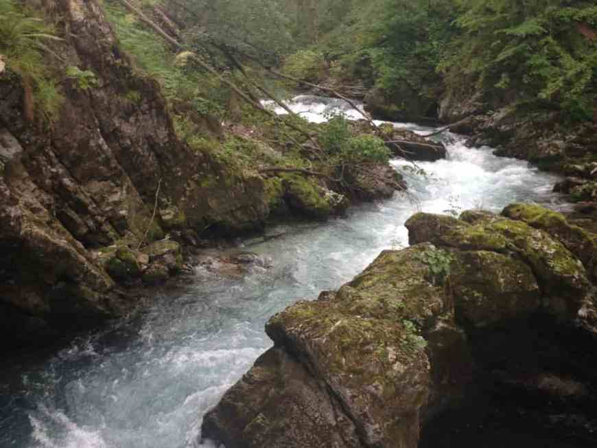 Vintgar Gorge, Slovenia, near Lake Bled. Easy walk, beautiful rushing waters.