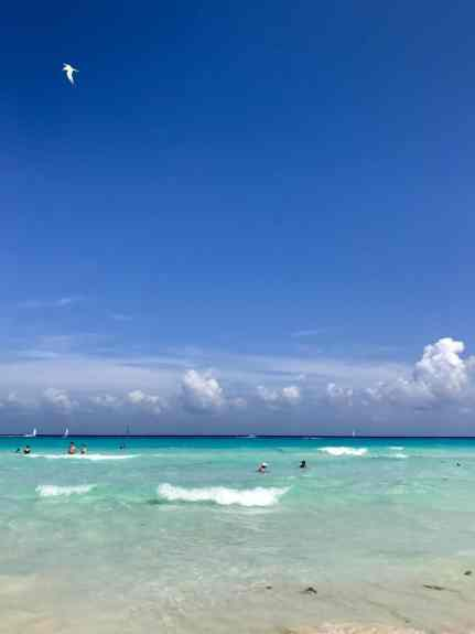 All about my first all-inclusive resort experience...what I learned, what I loved, what I'd do differently   Royal Hideaway Playacar in Mexico   all-inclusive resorts, beach vacations, how to plan a beach vacation #mexico #allinclusive #resort #beach #playadelcarmen