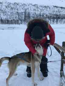Quality time with the pups when dog sledding