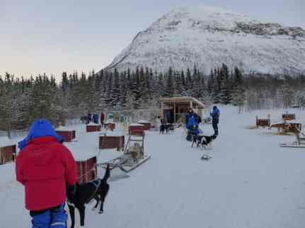 Dog sledding at Camp Tamok, outside of Tromso, Norway