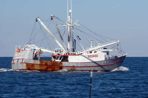 Whole Foods, Costco and PF Chang's Linked to Fishing Slave Labor