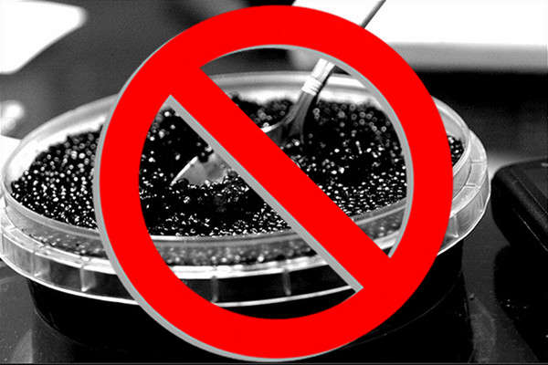 Advocates Ask Amazon.com to Stop Caviar Sales