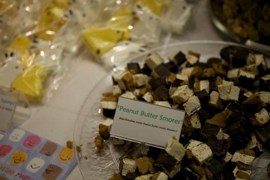 Sweet & Sara Peanut Butter Smores