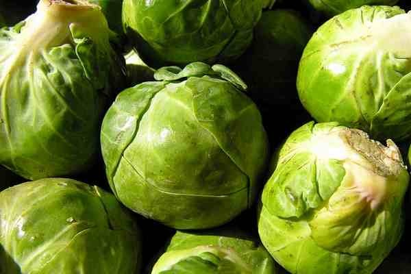 Cruciferous Vegetables Help Fight Cancer