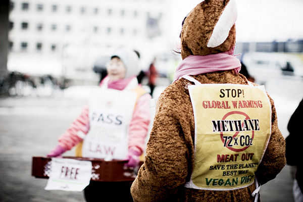 New WWF Report Recommends Lowering Meat and Dairy Consumption