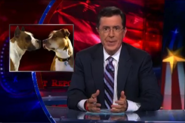 WATCH: Steven Colbert on Rep. Steve King's Dogfighting Defense