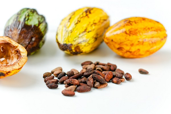 How Ethical Is Your Chocolate?