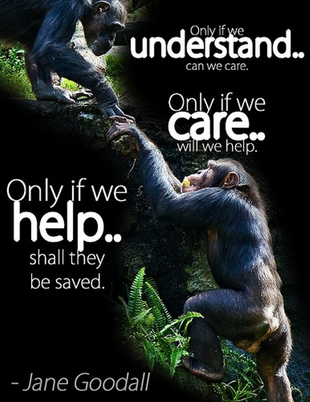 care Jane Goodall