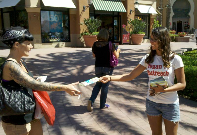 Why I Began a Vegan Outreach Advocate