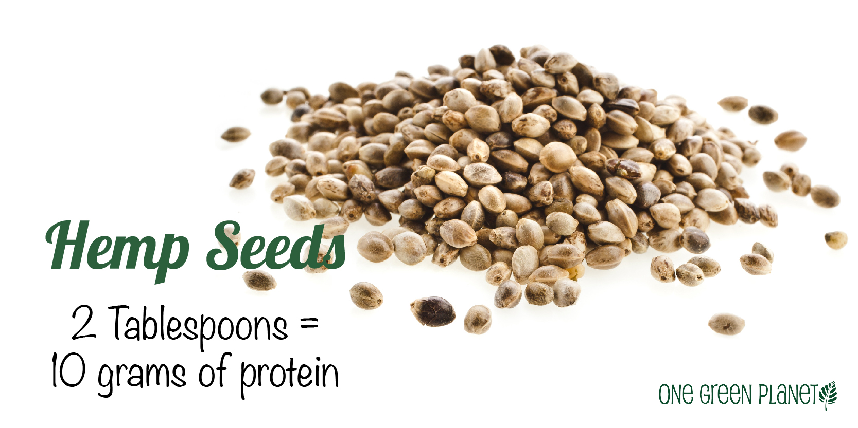 Soy-Free Foods With More Protein Than Beef