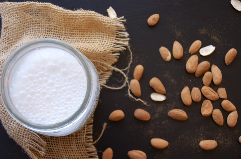how-to-milk-an-almond-and-make-milk (1)