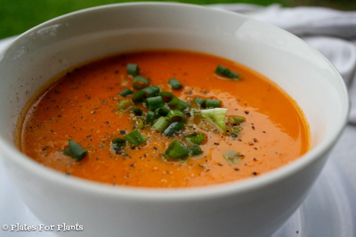 cheezy_tomato_soup-2 (2)