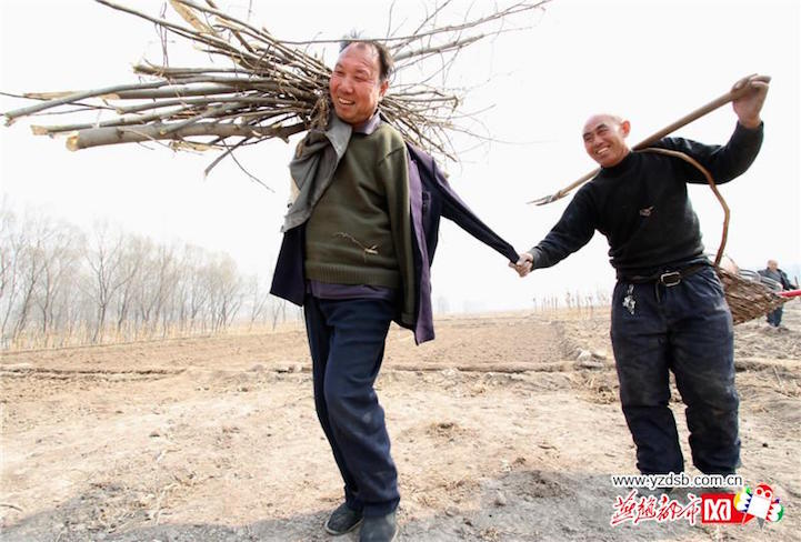 Blind Man and His Best Friend Who is a Double Amputee Have Planted Over 10,000 Trees in China