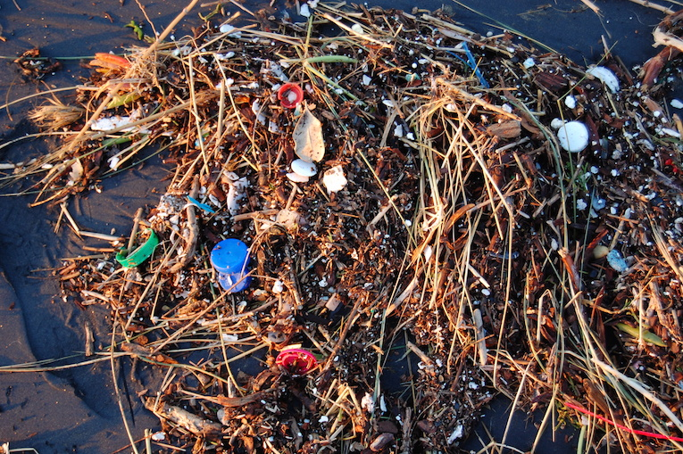 How Plastic Disrupts the Marine Ecosystem and What That Means for the Health of the Ocean and Consequently People