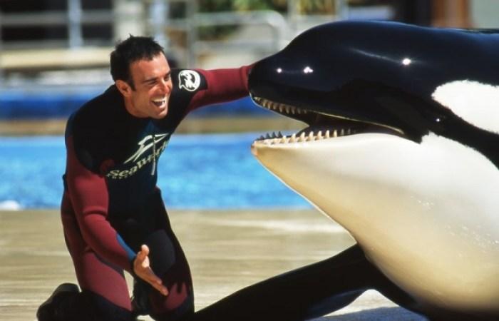 marine mammal captivity: the game changers