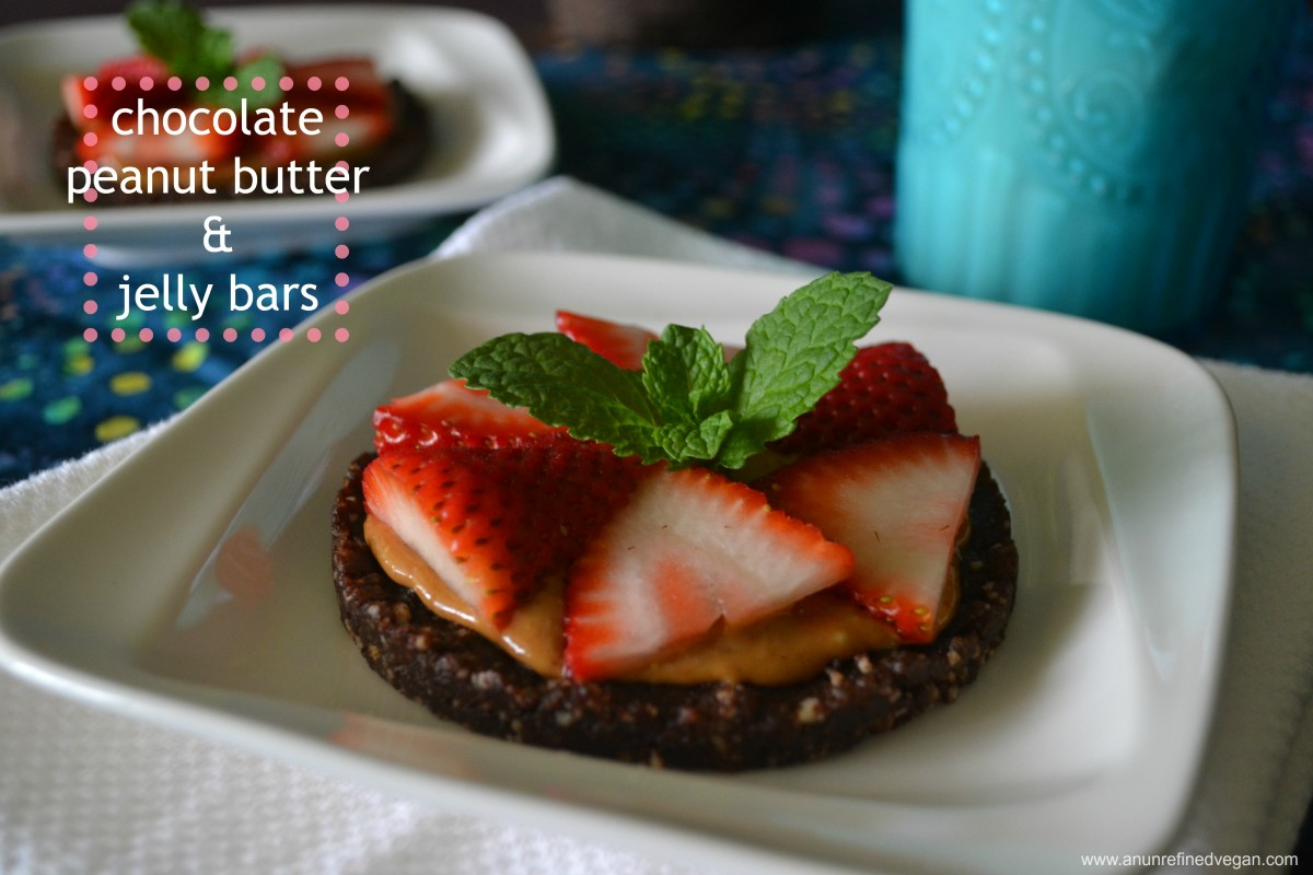 Chocolate-PB-Jelly-Bars-1200x800