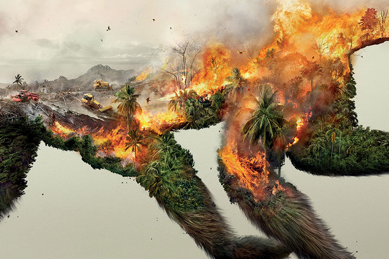 These Breathtaking Images Reveal That by Destroying Nature, We are Destroying Life Itself