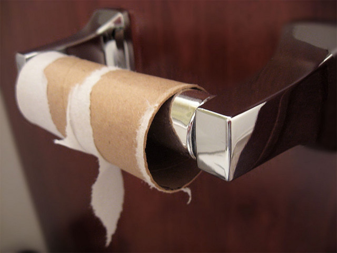 10 Unconventional Ways to Use Old Paper Towel and Toilet Paper Rolls ...