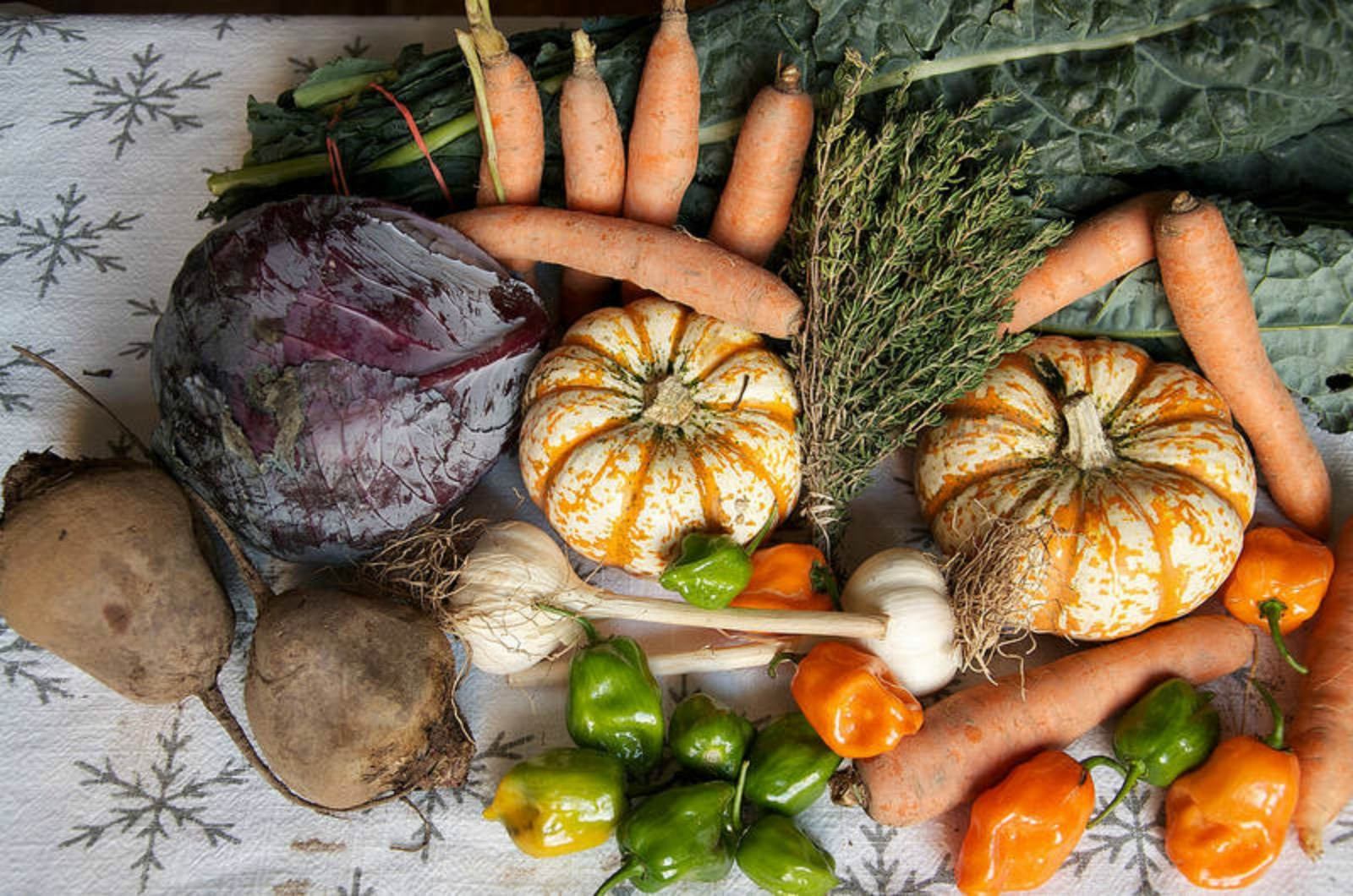Your Guide to Obtaining Fresh, Organic Produce in The Middle of ...