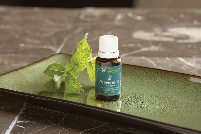 Peppermint oil for stomach