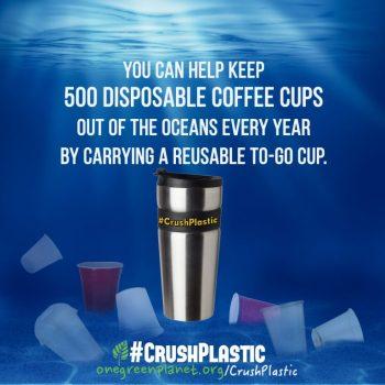 cp_cups-768x768