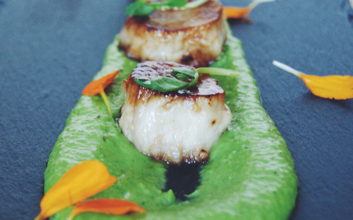 scallop mushrooms