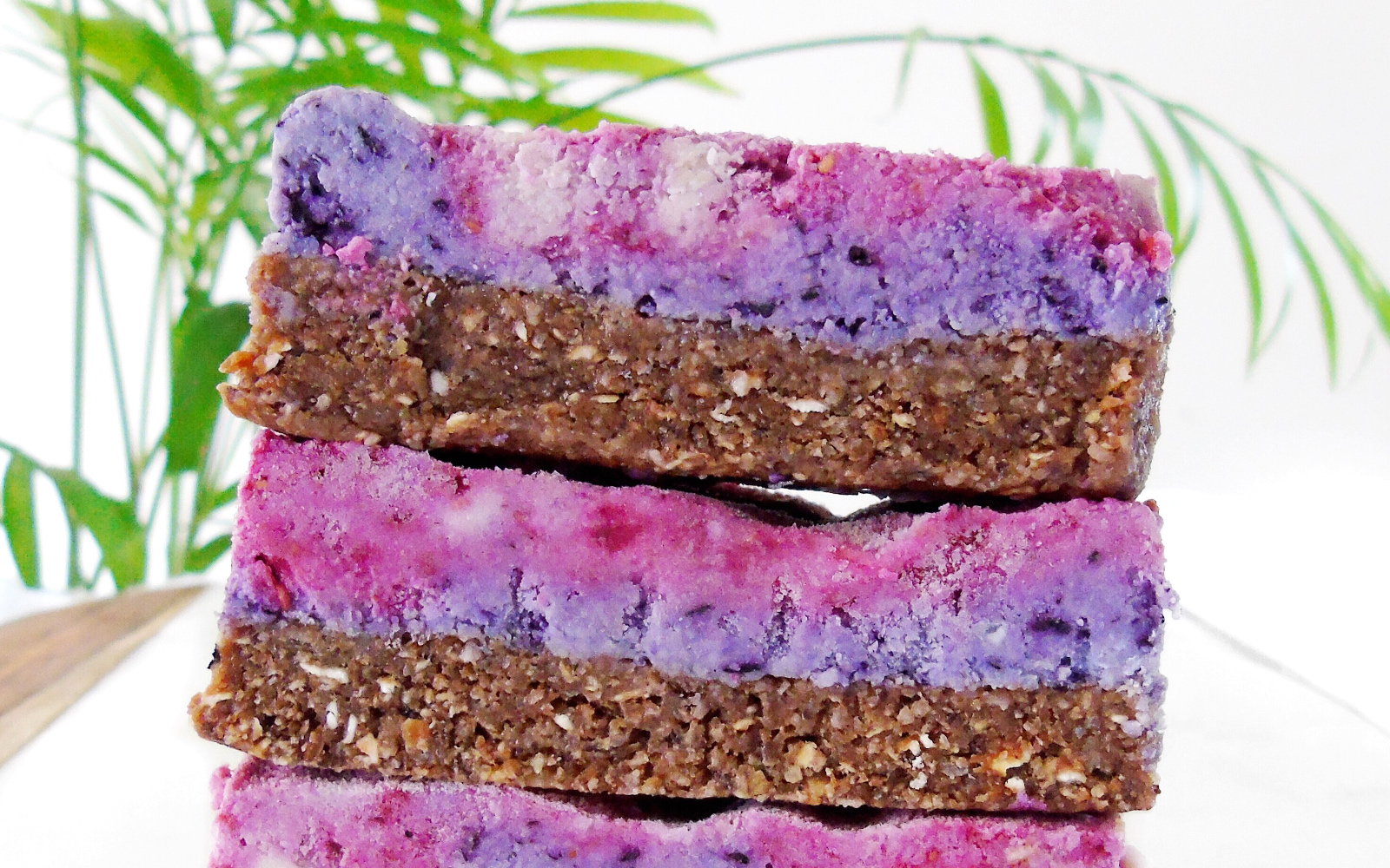 Galaxy Berry Bars