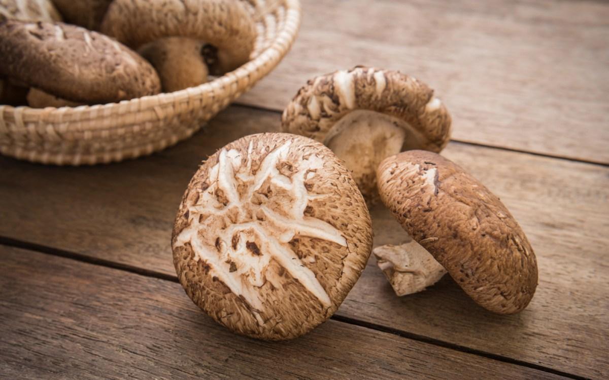 Shiitake Mushrooms An Earthy Mushroom Perfect For Soups