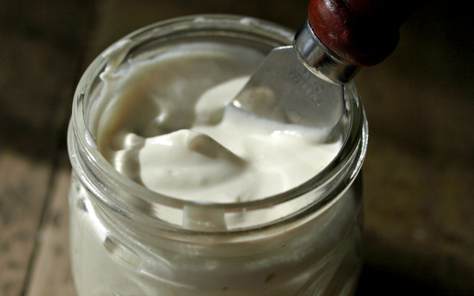 Oil Free Mayonnaise