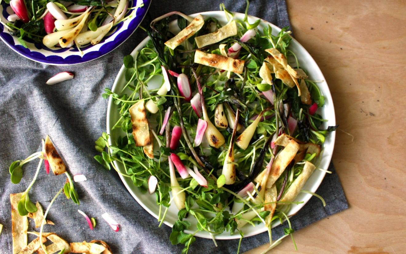 Vegan Fried Ramps With French Breakfast Radishes and Spring Shoots