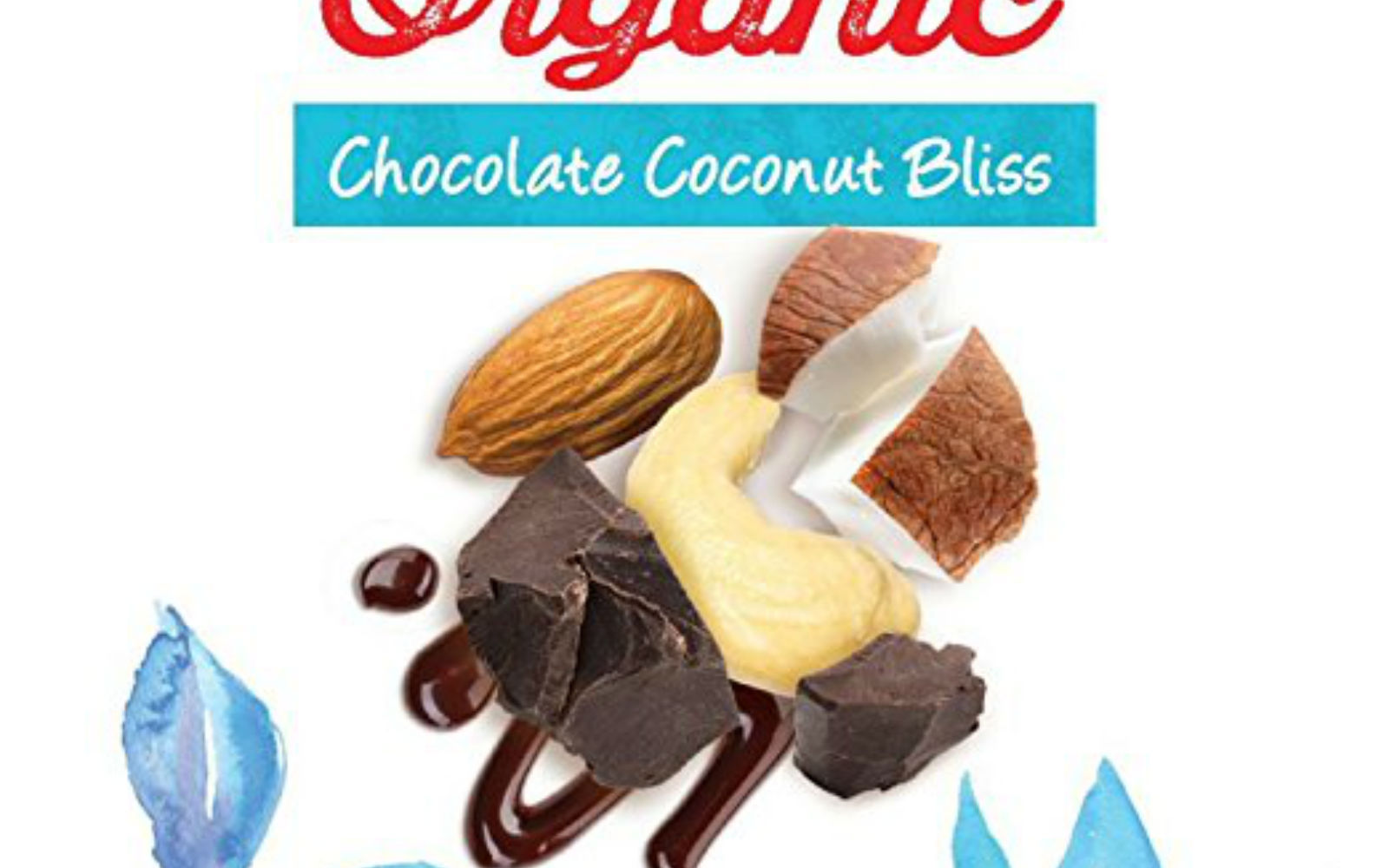 Raw Rev Chocolate Coconut Bliss Bars are free from animal products, GMOs, gluten, soy and whey protein. Each bar is made out of Agave, Dates, Cashews, ...