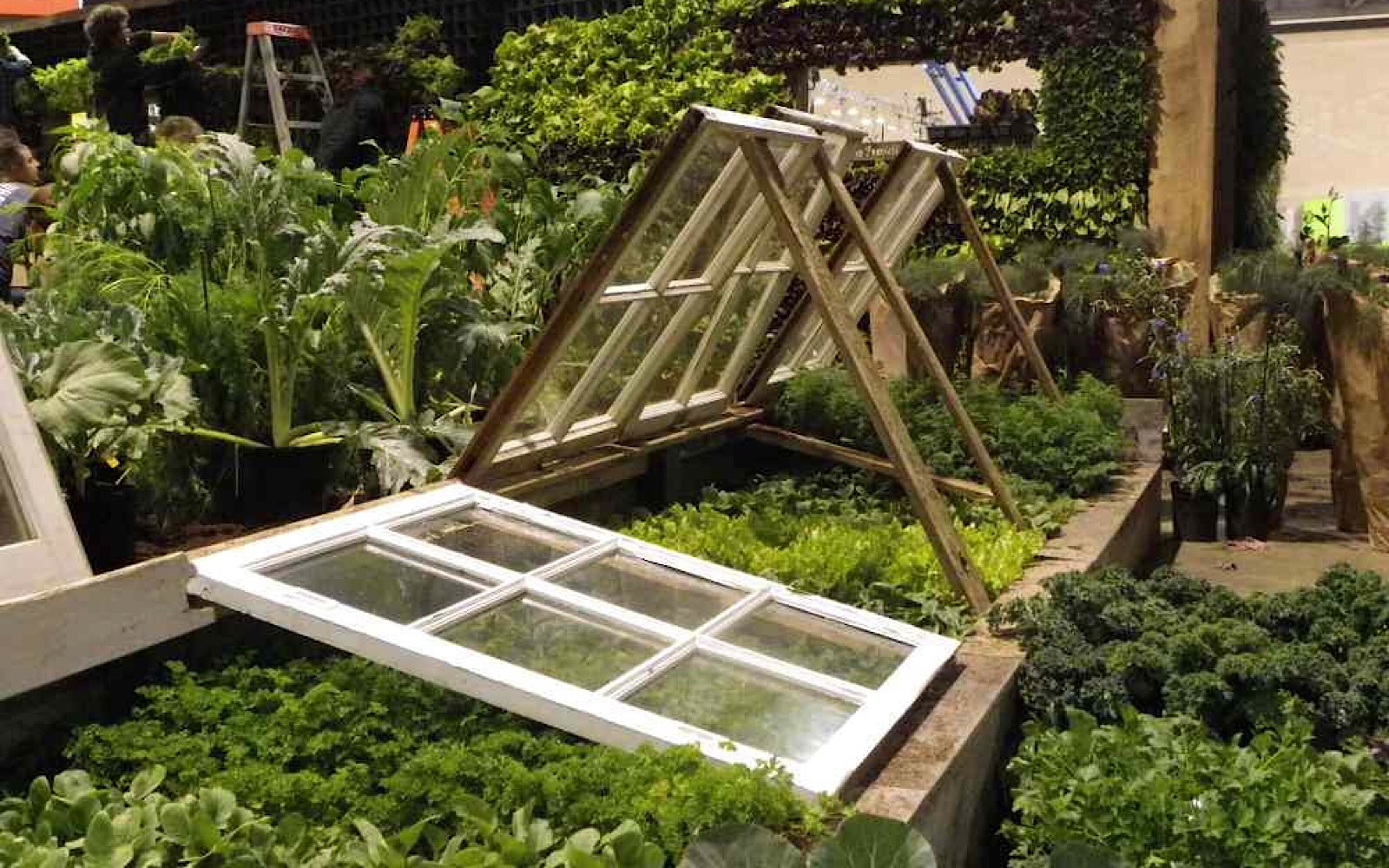 Why Your Gardens Need Cold Frames - One Green Planet
