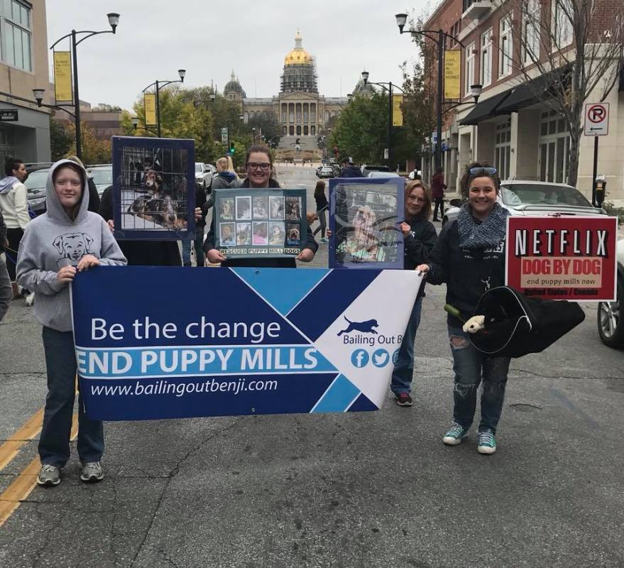 How This Small Iowa Town is Taking a Stand Against Puppy Mills