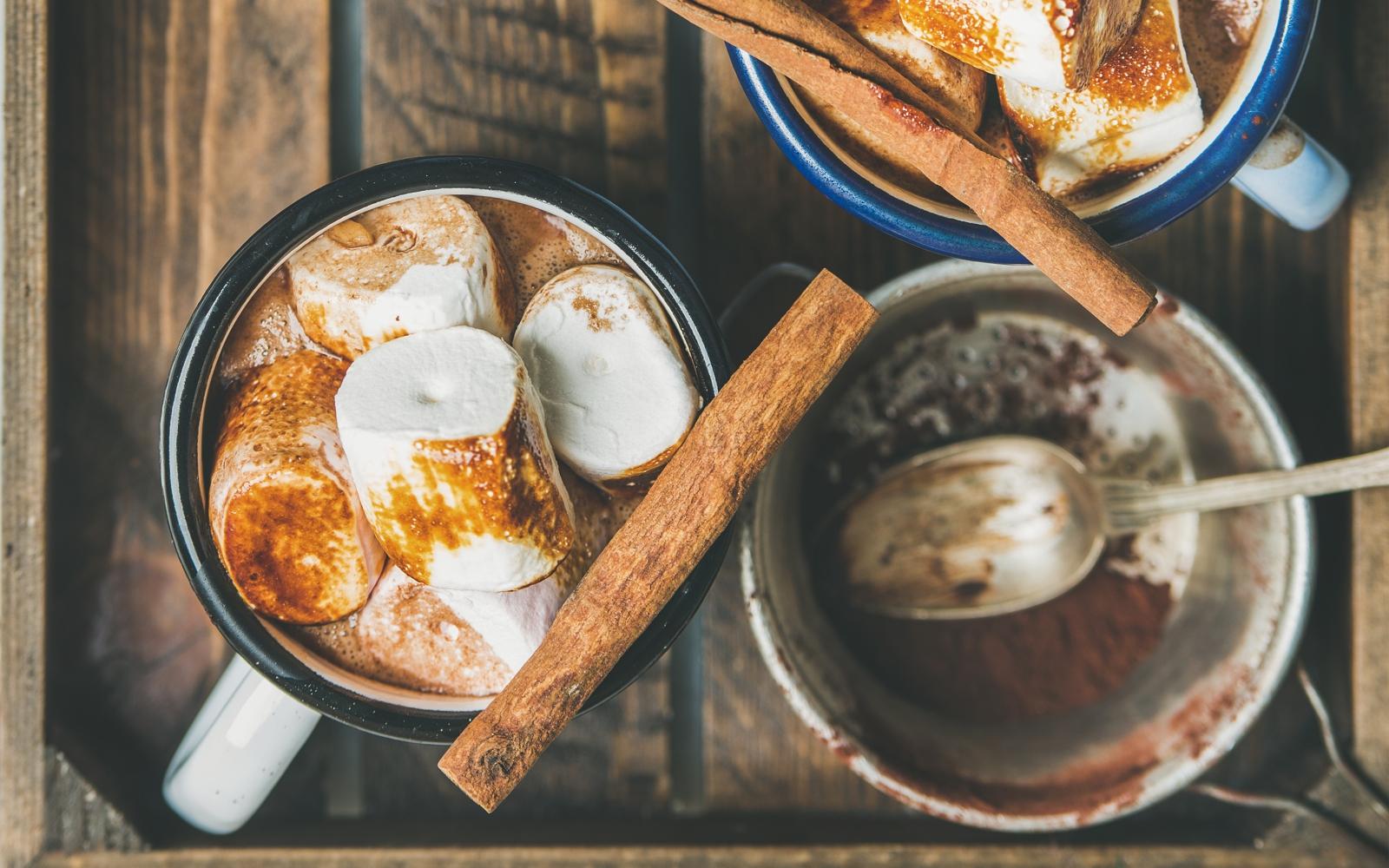 Vegan Hot Chocolate With Maca and Tonic Herbs