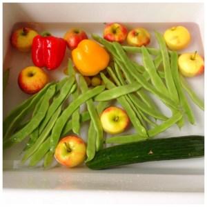 vegetables groente en fruit