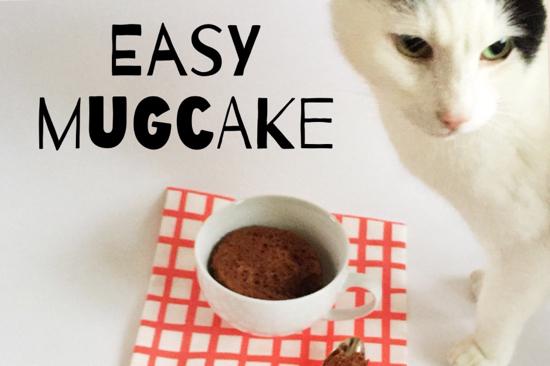 Mug cake: 2 suikervrije recepten