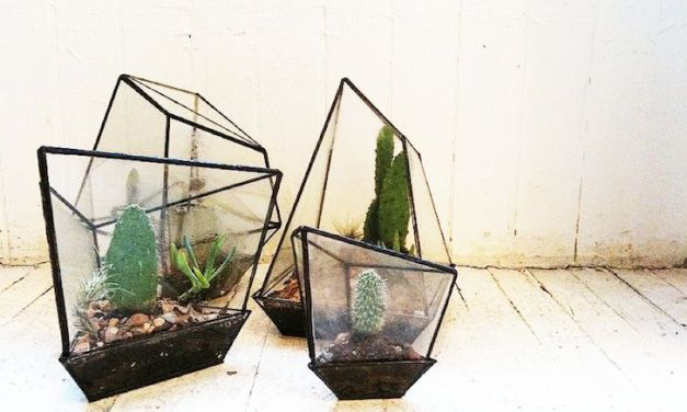 Interieurtrend: planten terrarium (+ 4-stappen how-to)