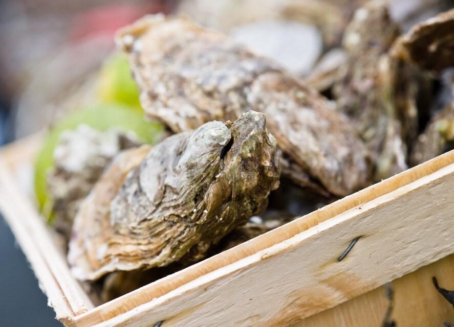 Recept lauwwarme oesters met prei