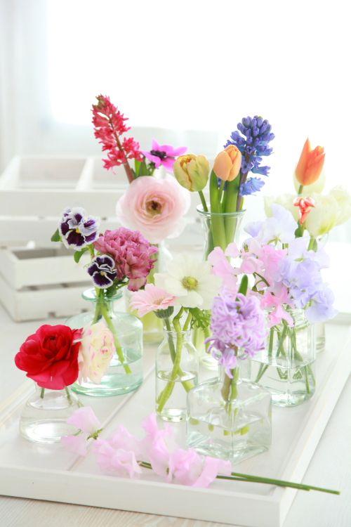 hoe blijven bloemen lang vers