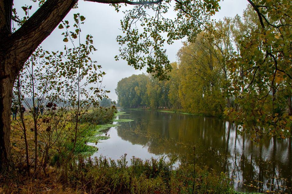 Herfstfotografie? 8 tips voor de mooiste plaatjes