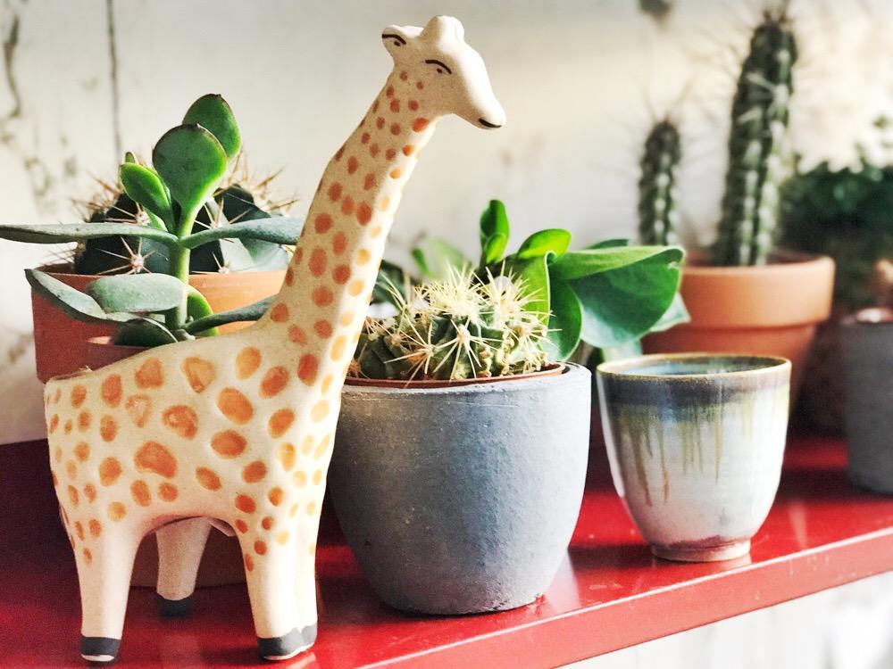 giraffe potje