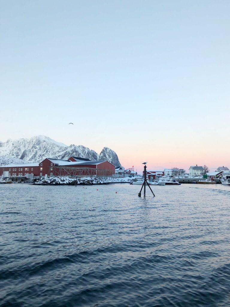 RIB boot tocht Lofoten