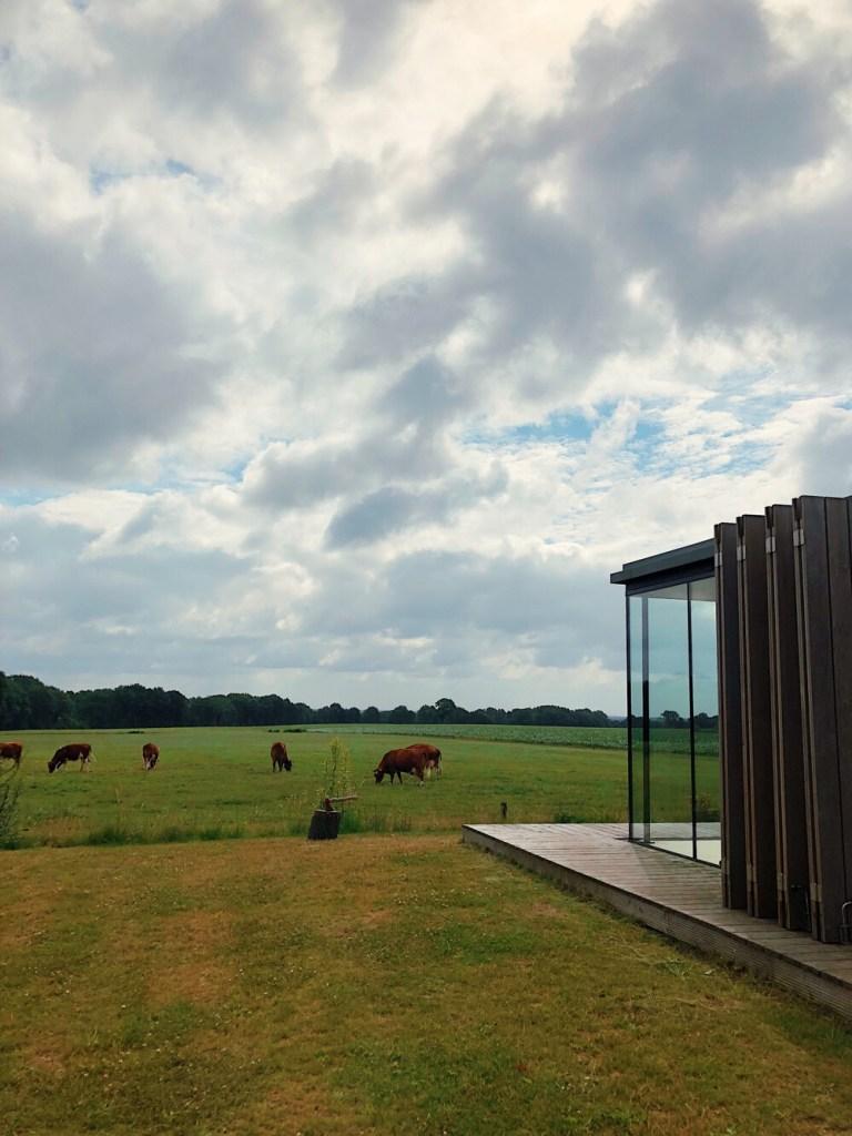 Tiny house in Twente