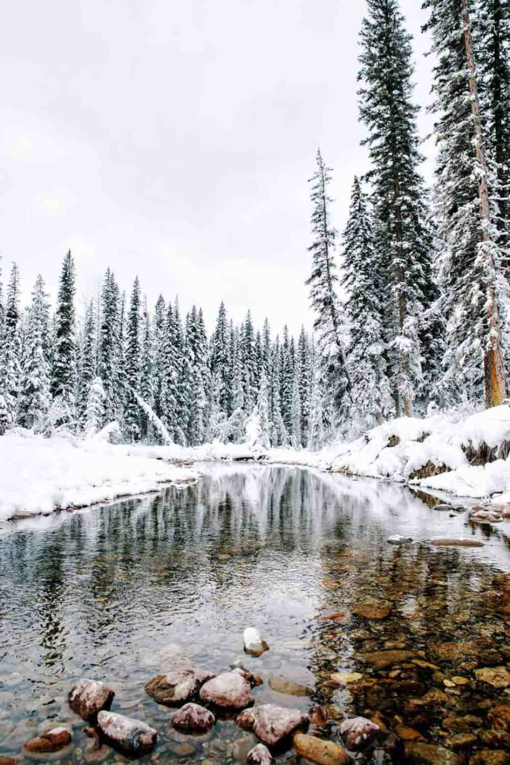 Wintersportreis Canada