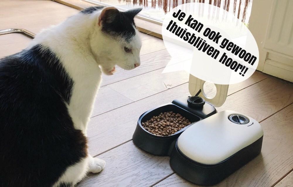 Winnen: kattenvoerbak met timer
